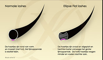 Ellipse Flat Lashes D-Krul (Enkele Lengtes)